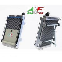 Радиатор AF15 410x245x60мм с крепежом и шторкой