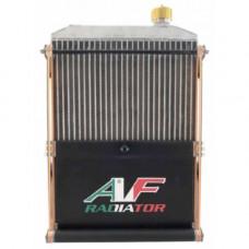 Радиатор AF Gold Large 430x290x40мм с крепежом и шторкой